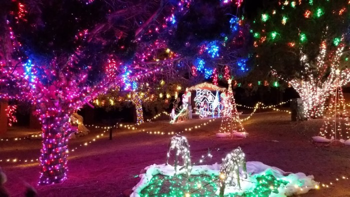 Christmas Lights Dance To Music