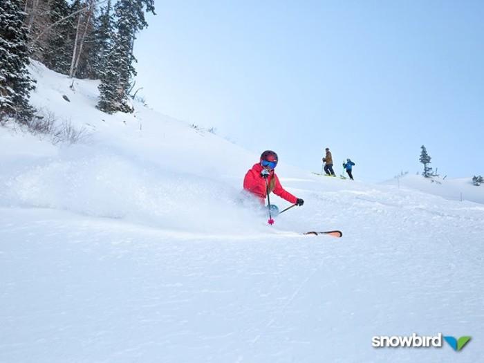 1. Great Skiing
