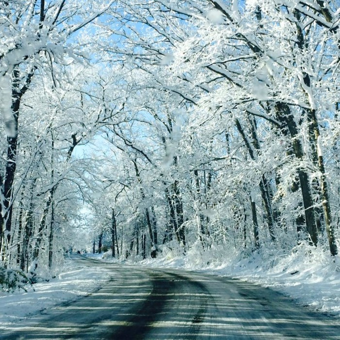7. Kristina Marie Ford- Herrera‎ shared a pretty incredible picure of snow covered trees in Crown Point, Indiana.