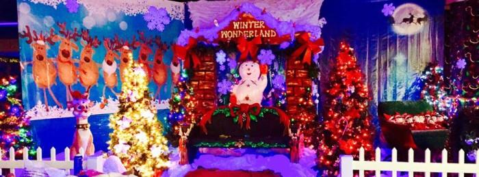 Alum Creek Christmas Lights