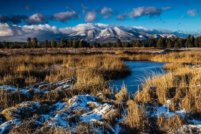 15. Snow-covered Kachina Wetlands with the San Francisco Peaks in the background.