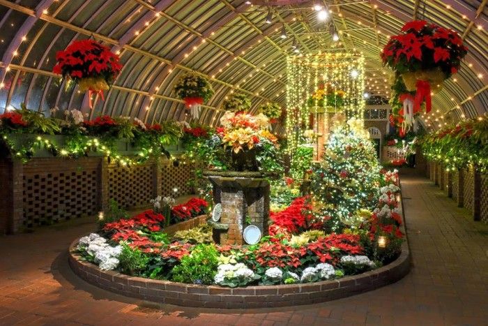 4. Visit Phipp's Conservatory in Pittsburgh to see their amazing holiday displays.
