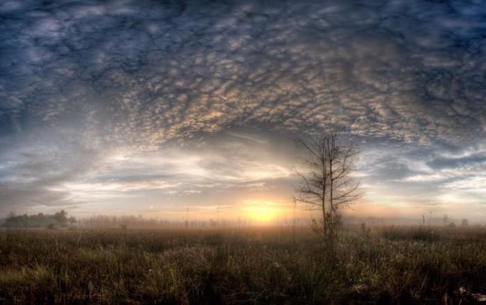 12. Rhett Butler captured this sunrise in Fakahatchee Strand Preserve State Park.