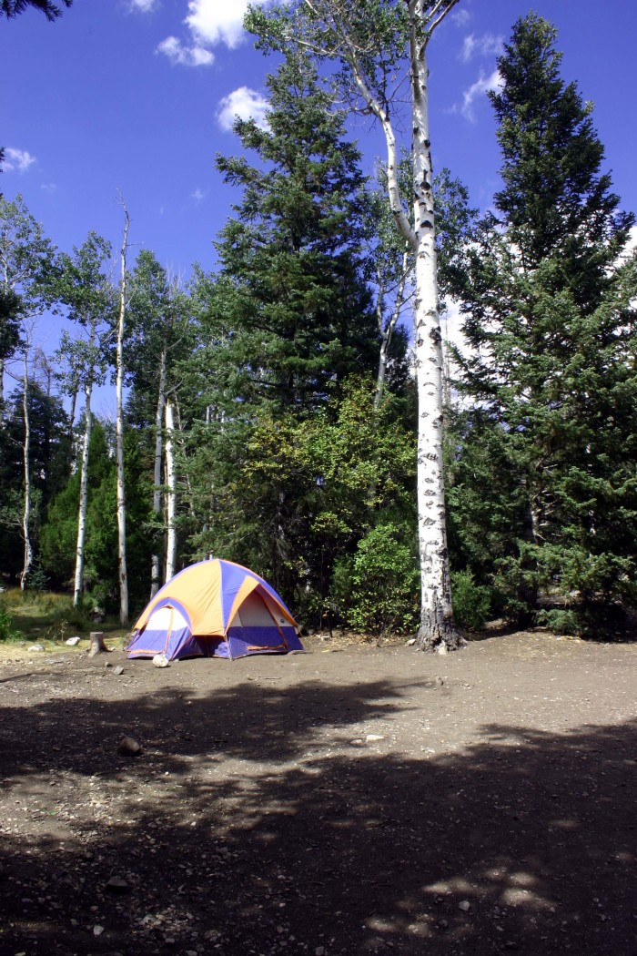 5. Plan a camping trip to Great Basin National Park.