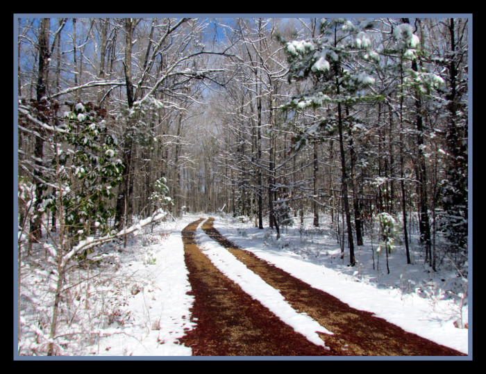14. A lovely blanket of snow converts a quintessential Mississippi dirt road into a picture-perfect winter scene.