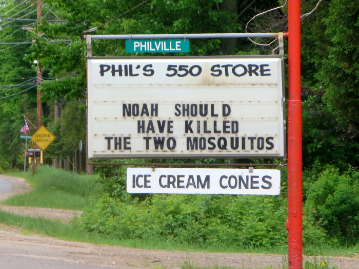 5) Fewer mosquitoes during the summer.