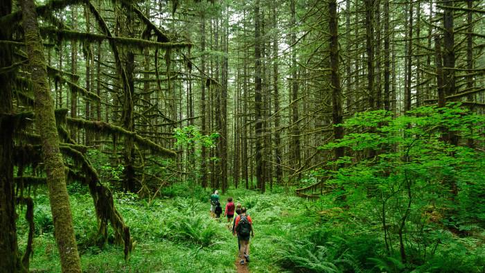 12. Go on a hike.