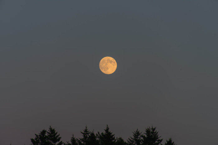 1. The Full Moon Hike at Mt. Abrams, January 30th.