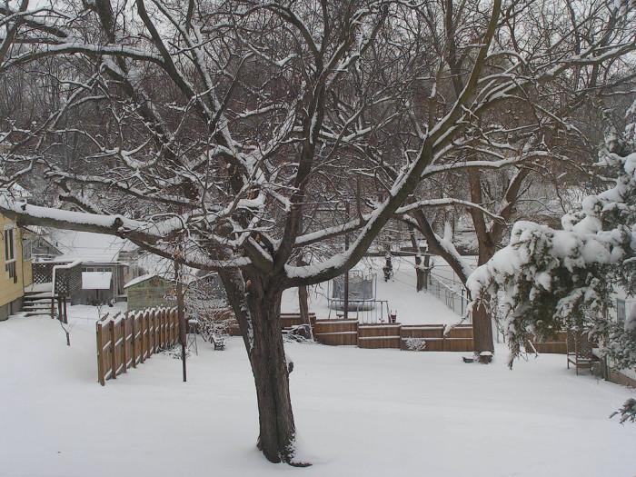 15.World of Snow, St. Joseph