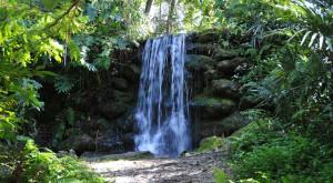 24. Rainbow Springs State Park