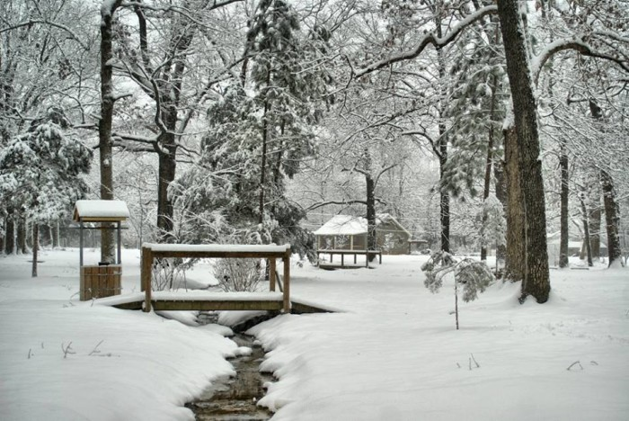 15. In the beginning of the year, Tupelo was transformed into a beautiful winter wonderland.