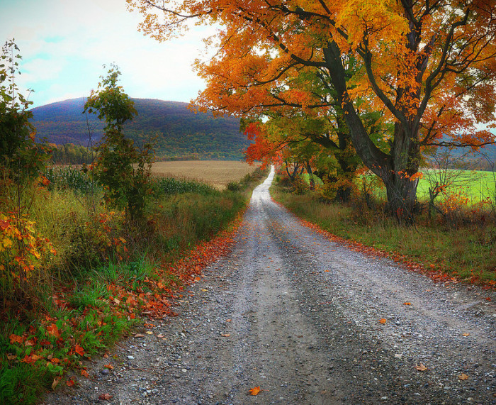 12.  We don't all live on dirt roads.