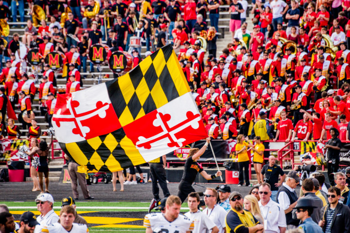 12) Terps