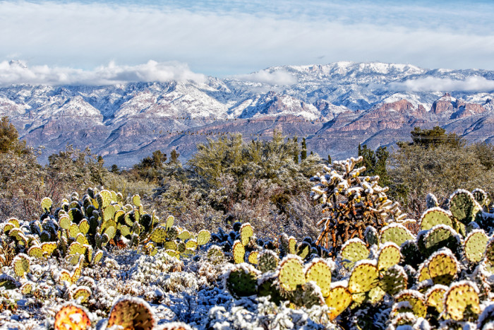 8. Other places include the mountains around Tucson. The Santa Catalinas, Santa Rita, and Rincon Mountains all occasionally see snow in the winter and it's always a rare treat.