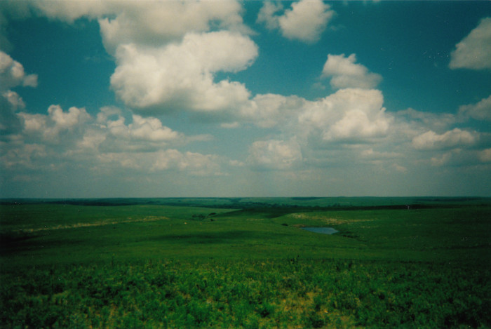 1. Roaming the Tallgrass Prairie National Preserve.