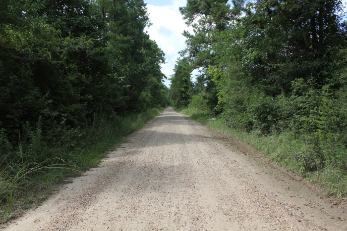 1) Ghost Road (Saratoga)