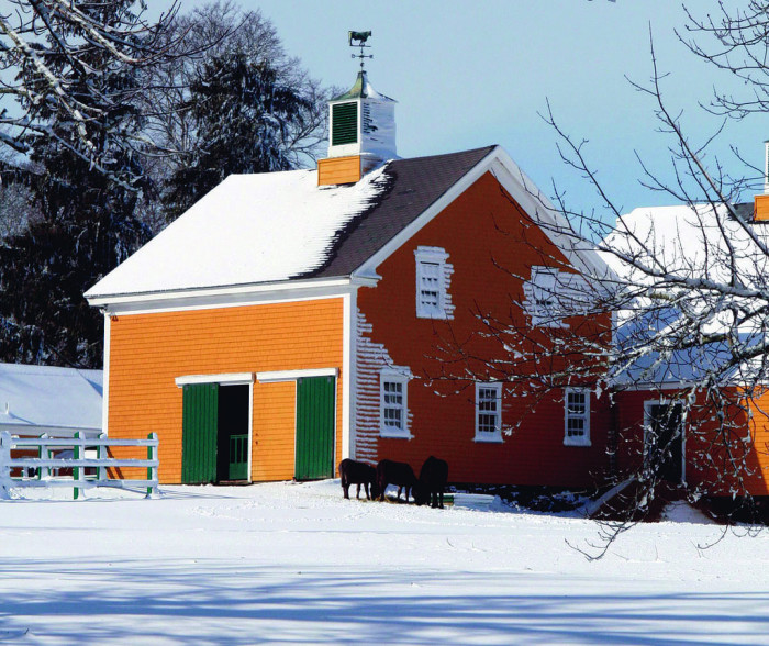 5. Hiller Farm in Rochester adds a bit of colorful  warmth to the icy landscape.