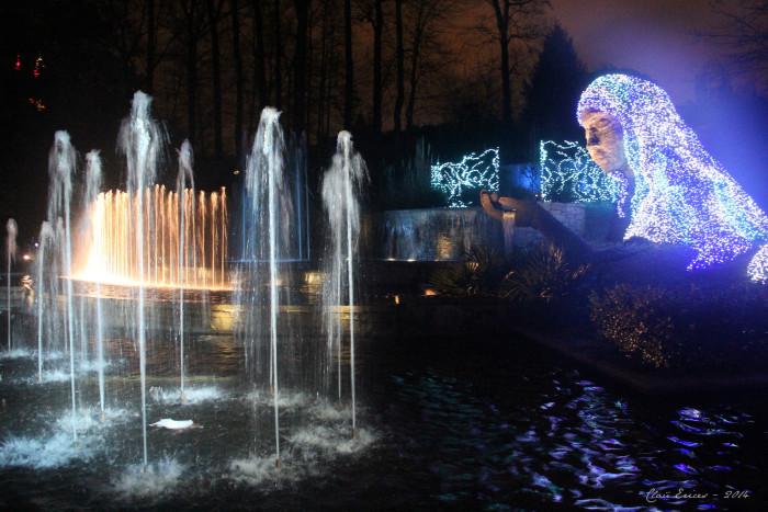 8. Atlanta Botanical Gardens - 1345 Piedmont Ave NE, Atlanta, GA 30309