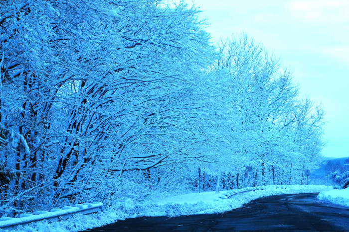 11. Simply stunning in Middleboro.