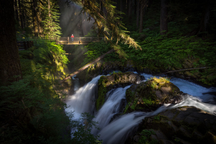 9. July: Go for an unforgettable hike to see Sol Duc Falls.