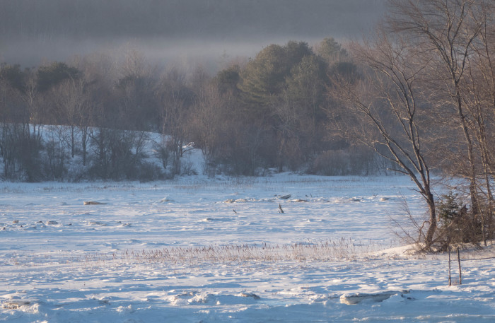 2. This frozen midcoast lake on a chilly morning is the epitome of serenity.