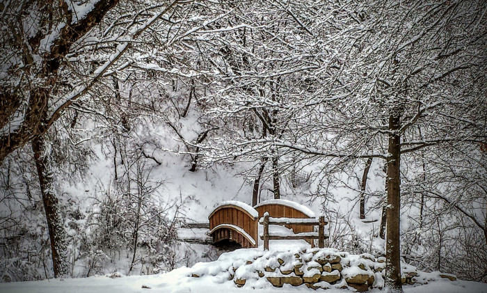 1. Springbrook State Park in Guthrie Center is absolutely stunning during the winter season.
