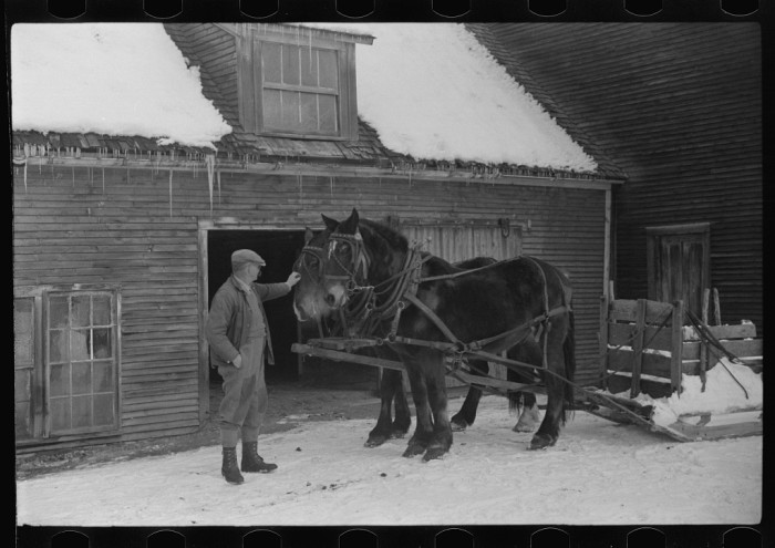 17.  Hired man and team, Putney Homesteads, near Woodstock, Vermont.