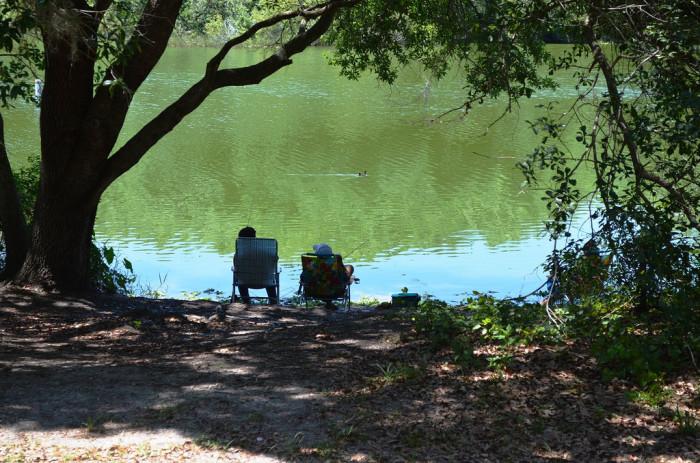 Edward Medard Park offers hiking, cycling, camping, boating and paddling, fishing, horseback riding and picnicking.