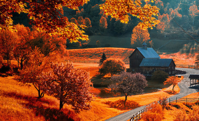 4.  Autumn is incredible.