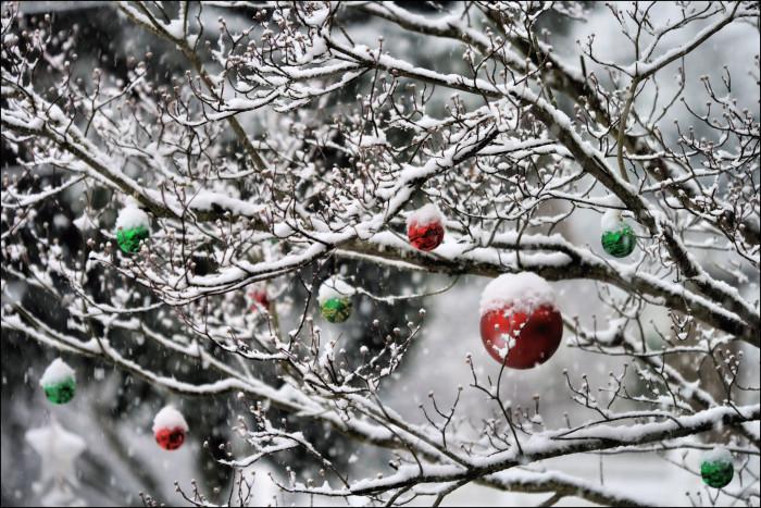 9 Reasons Christmas In Alaska Is The Absolute Best