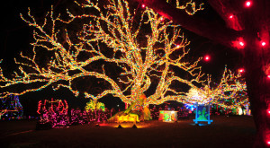 11 Reasons Christmas In Texas Is The Absolute Best