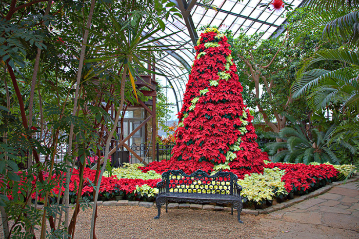 Birmingham Botanical Gardens10 Best Places In Alabama For An Epic Marriage Proposal. Mobile Alabama Botanical Gardens. Home Design Ideas