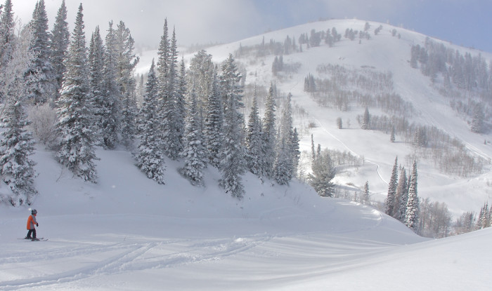 1. Snow in the Mountains