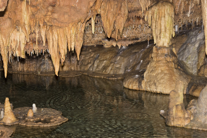 Missouri: Onondaga Cave State Park