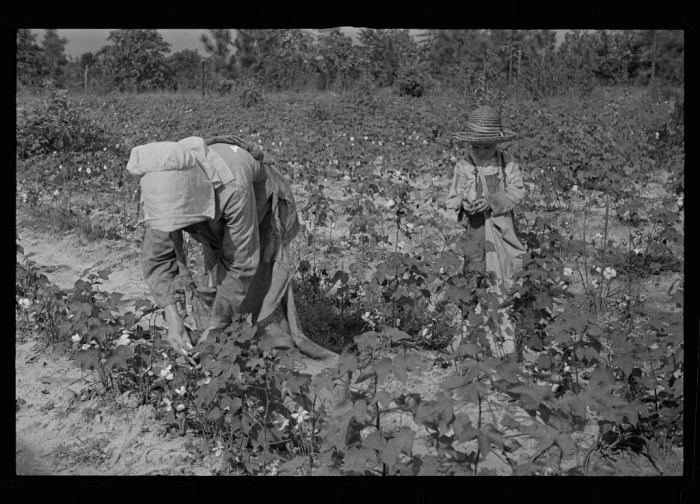 2. Working the fields was a common chore for residents of all ages.