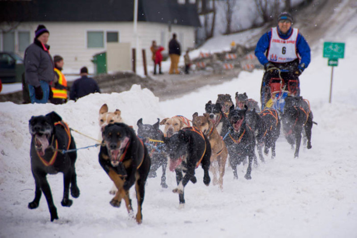 8) Yukon Quest International Sled Dog Race