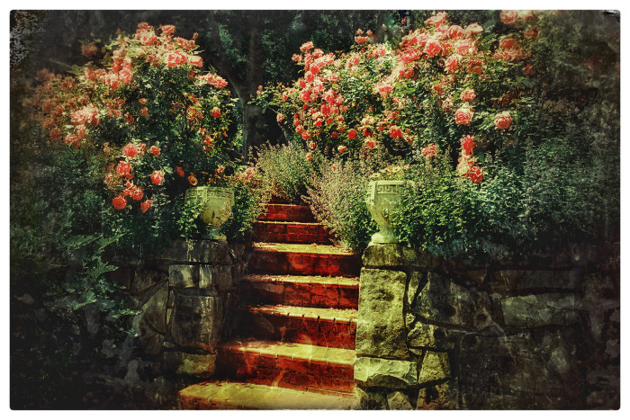 1. It seems like if you squint hard enough, you'll probably be able to see the fairies frolicking in this beautiful, wild-looking garden.