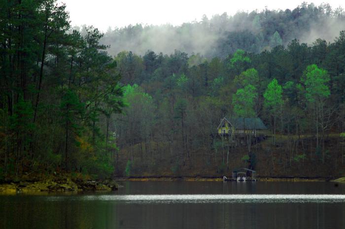 5. A beautiful, foggy morning on Lake Wedowee.