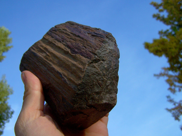 4. You took some petrified wood from the Escalante Petrified Forest State Park.