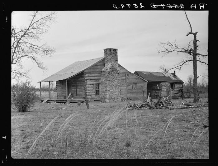 3) A home in Wilson Cedar Forest