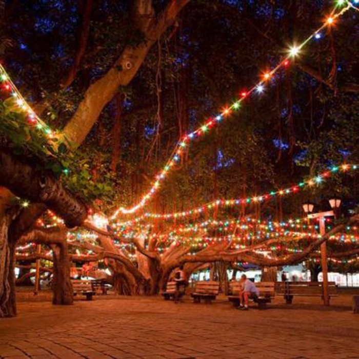 Christmas Tree Hawaii Part - 18: Here Are The 8 Best Christmas Light Displays In Hawaii. Theyu0027re Magical.