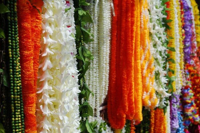 3) The Lei
