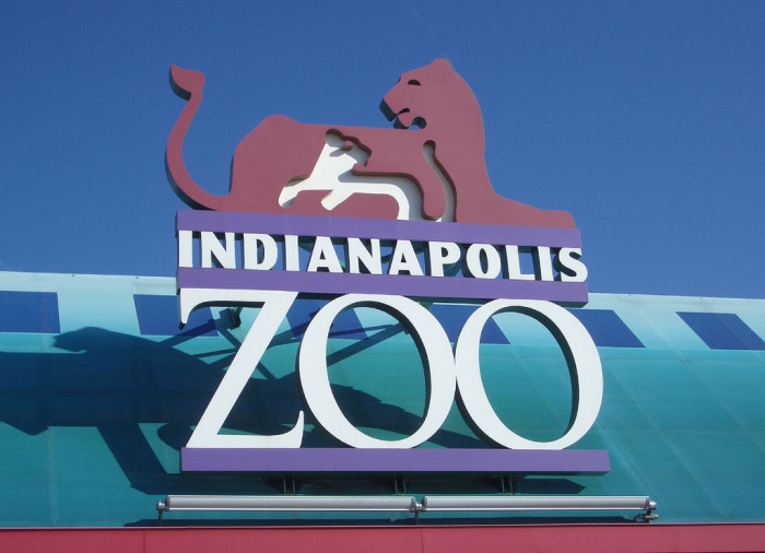 Z is for Zoos
