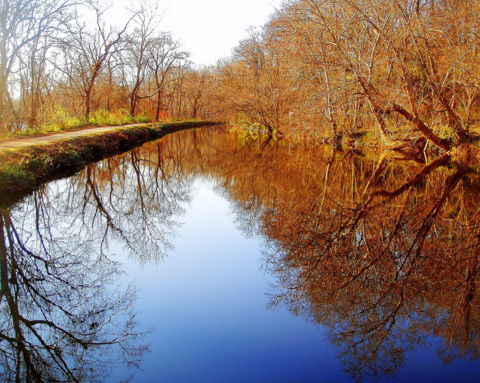 8) Bicycle along the gorgeous C & O Canal.