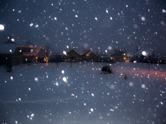 7. Gardner snow globe.