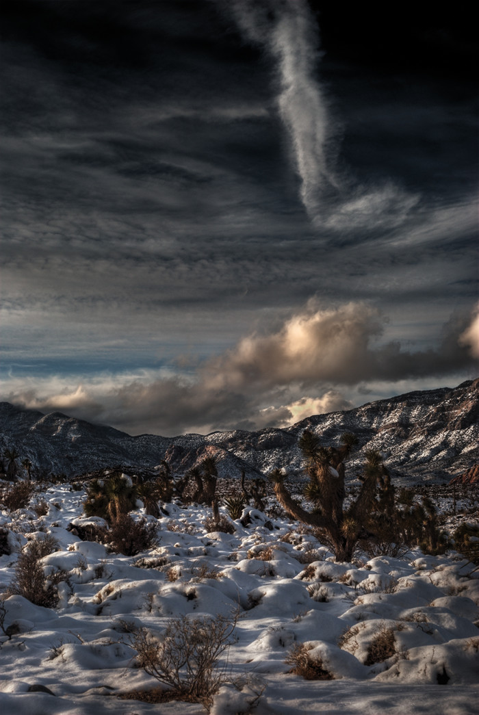 14. This remarkable winter scene was captured in the Calico Basin in December 2008.