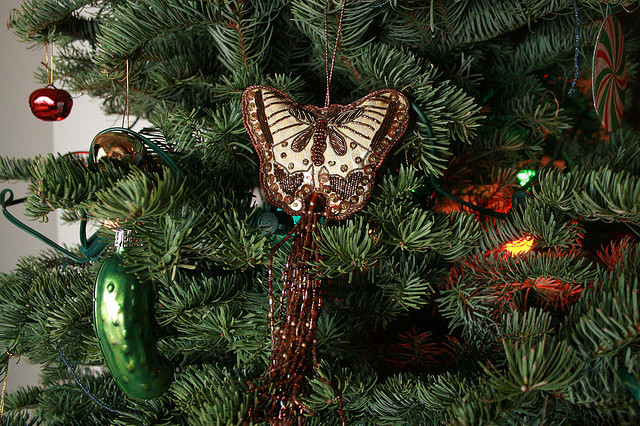 2. Can you find the pickle on this tree? This is just one of the many Christmas traditions we enjoy.