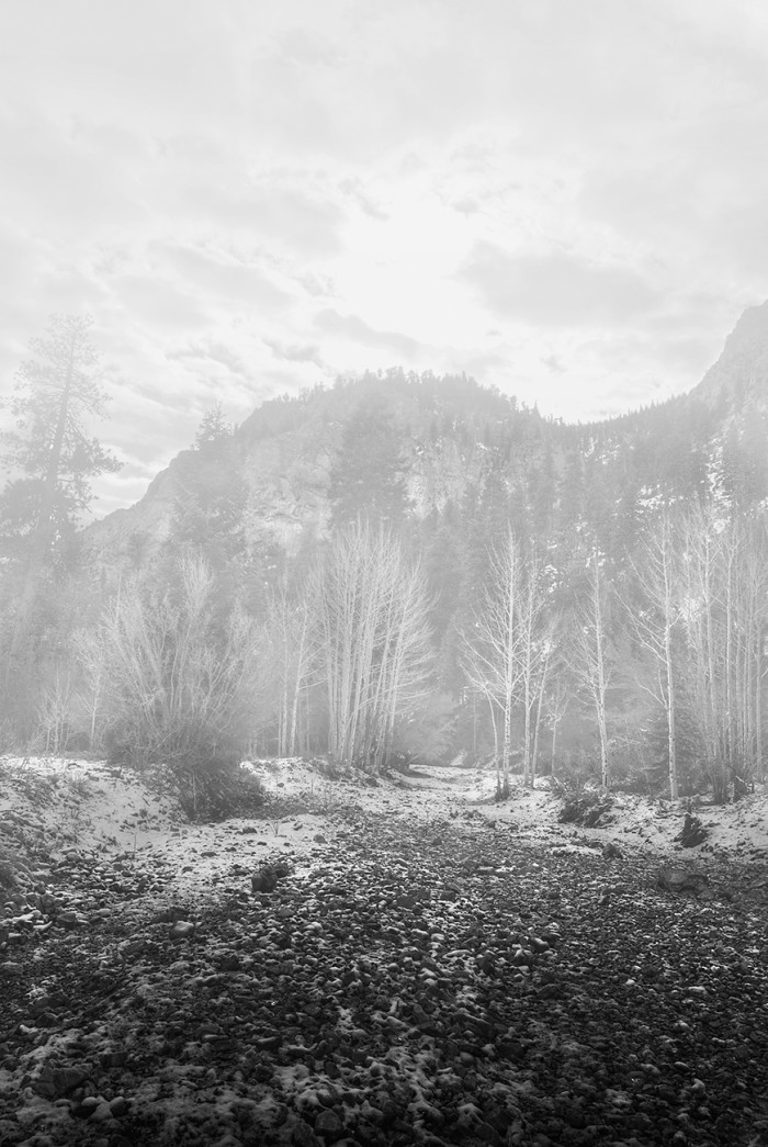 3. Mount Charleston is blanketed in fog, creating such a magical scene.