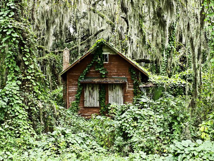 11. This house near Crescent City is certainly where Goldilocks encountered three Florida black bears.