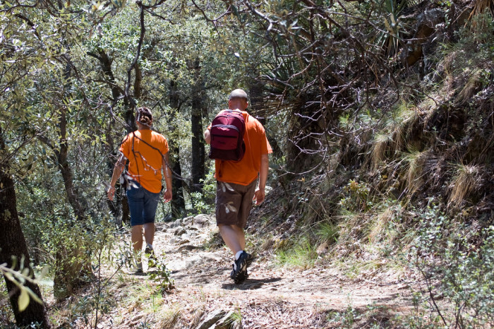 3. Going hiking in the fall without wearing bright clothing.